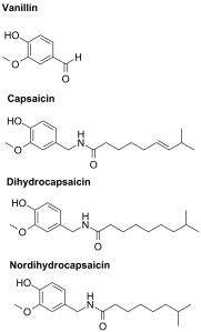 Structures of vanillin and the most common capsaicinoids.