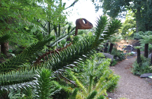 Monkey Puzzle Tree and a Dinosaur Sculpture (in the Evolutionary Dell)