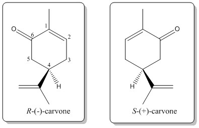 Fig. 3: Enantiomers of carvone.