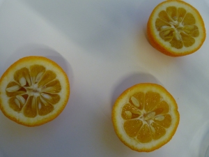 Seville oranges halved to show the numerous pips.
