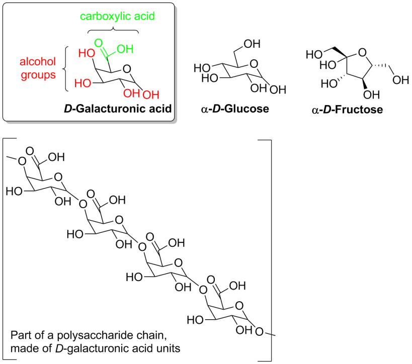 Molecular structures of the sugars and a polysaccharide chain.