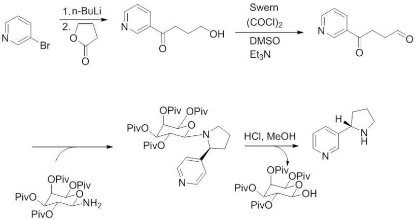 Figure 4. Enantioselective nicotine synthesis first reported by Loh et al in 1999, which uses a chiral auxiliary to ensure a high enantiomeric excess