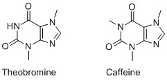 The Molecular Structures of Theobromine and Caffiene