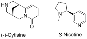 Structures of cytisine and nicotine