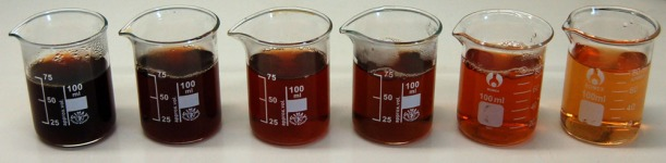 A series of beakers containing increasingly dilute solutions of tea