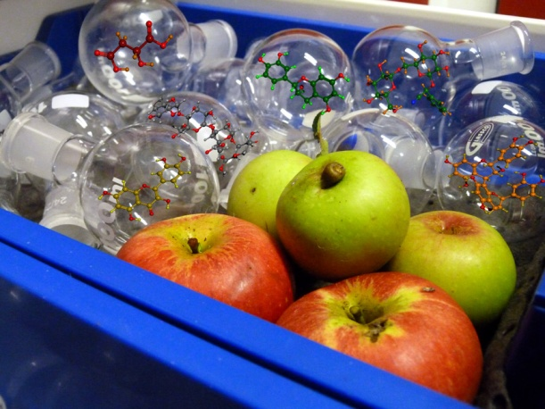 Apples, round-bottomed flasks and some of the molecules present in apples: