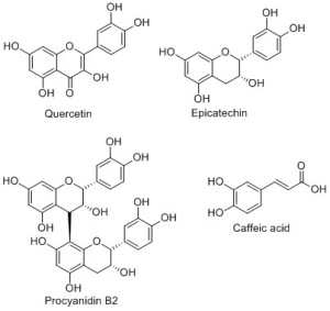 Scheme 2: Some of the phenolic compounds present in apples.