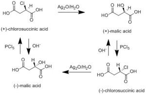 Scheme 3: Walden cycle.