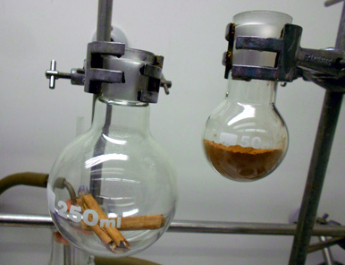 the reaction of cinnamaldehyde and acetone lab report