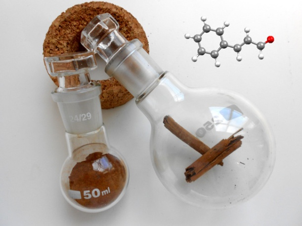 Both powdered cinnamon and cinnamon sticks shown in round bottomed flasks together with a molecule of cinnamaldehyde, the molecule that gives cinnamon its aroma and taste.
