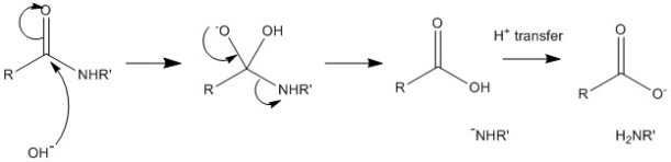 General scheme for alkaline hydrolysis of an amide or peptide to an amine and a carboxylate