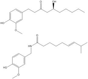 gingerol and capsaicin