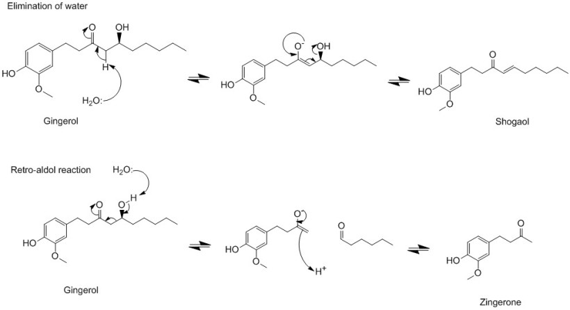 reaction scheme2