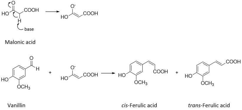 ferulic acid synthesis