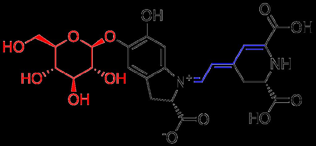 Molecular structure of betanin